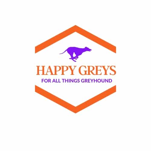 happy Greys, greyhounds, greyhound clothes, dog bandana, dog snoods
